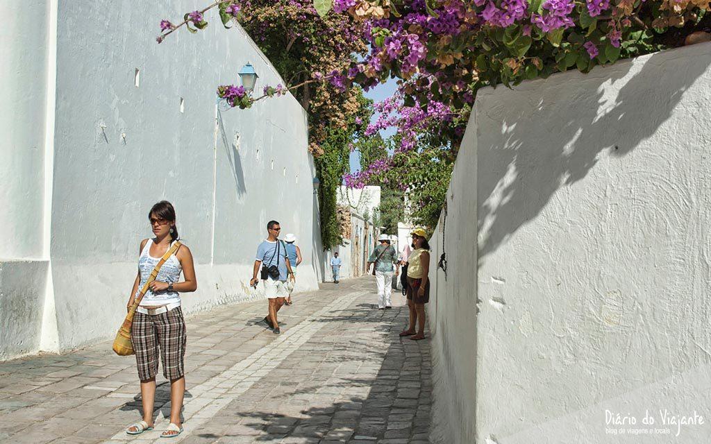 Sidi Bou Said, no cimo da colina | Tunísia