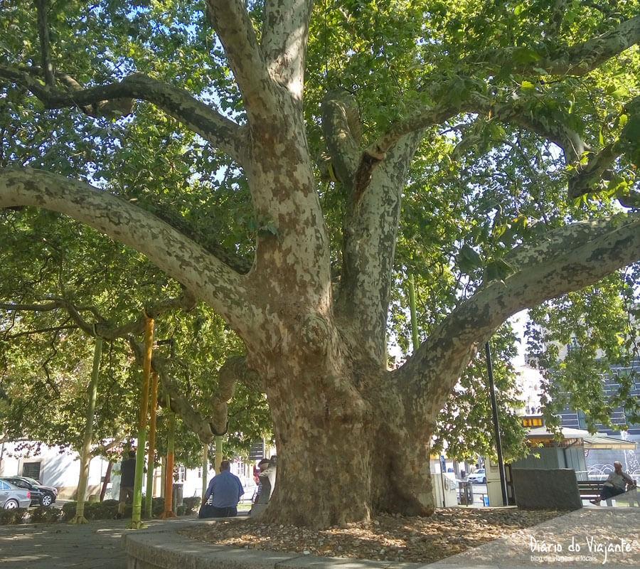 Portalegre | Alto Alentejo e Beira Baixa | Diário do Viajante